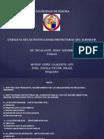 UNIDAD-13-INSTITUCIONES-PROTECTORAS-DEL-ACREEDOR-CIVIL(1).pptx