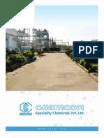 Brochure - CSCPL