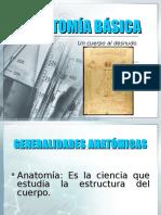 Anatomia Basica 2