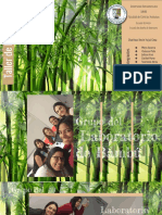 Laboratorio de Bambu