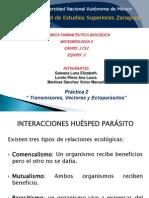 EQ 2 EXPOSICIÓN VECTORES 2752