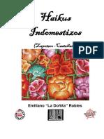 Haikus Indomestizos Zapoteco