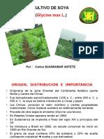 Cultivo de Soya 07