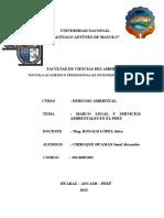 Ensayo servicios ambientales.docx