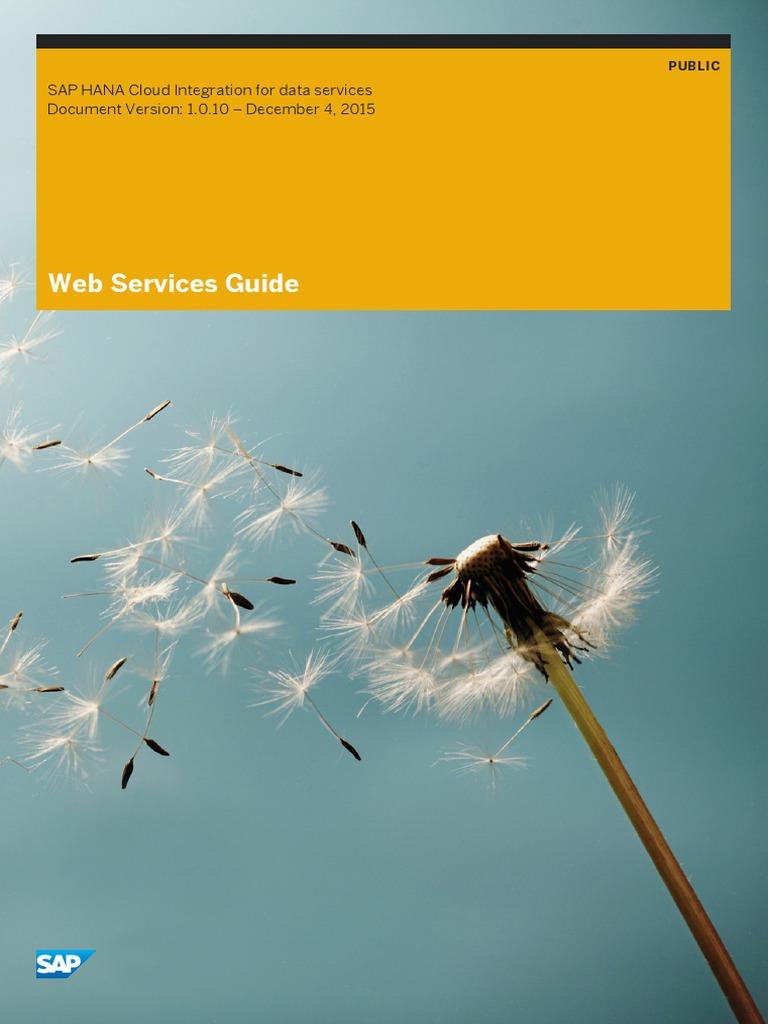 Web Services Guide - SAP HCI | Soap | Web Service