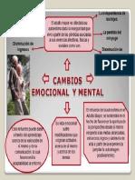 Cambio Emocional