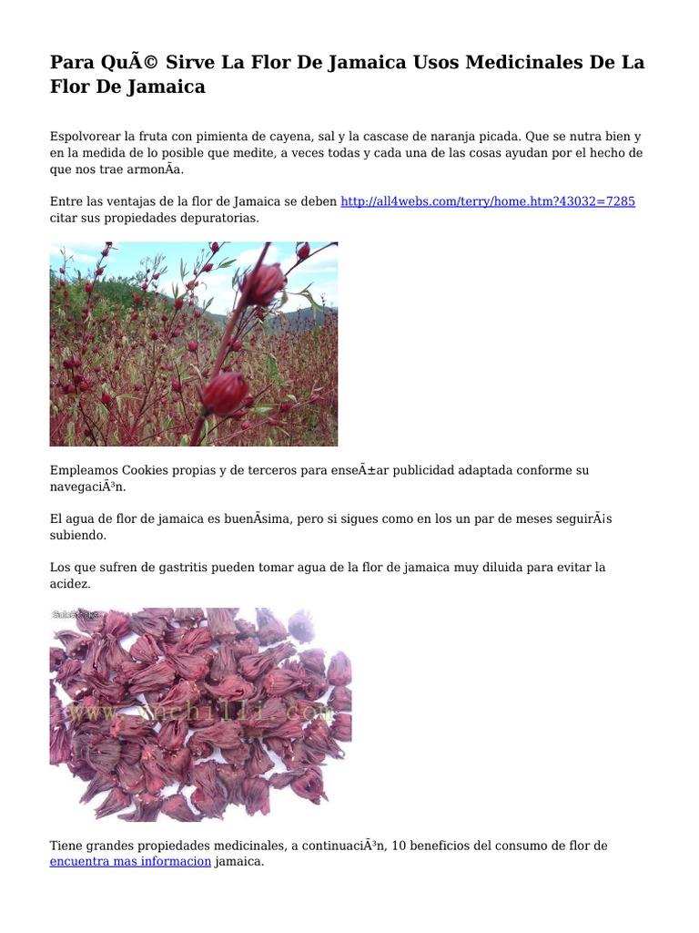La flor d jamaica sirve para adelgazar