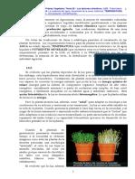 Cta Pmp Veg - 05 - Los Factores Climµticos 2015