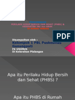 PPT PHBS