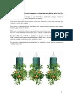 Cómo Cultivar Tomates en Botellas de Plástico