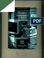 Teoría General Del Proceso - José Vizcarra Dávalos