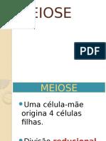 Citogenética – Divisão Celular – Meiose