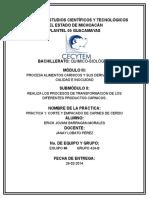 Práctica 1 procesos