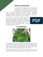 DROGAS ALUCINÓGENAS