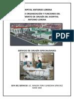 Manual de Organización y Funciones Del Departamento de Cirugía Del Hospital Antonio Lorena