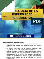 Inmunologia de La Enfermedad Periodontal_2010