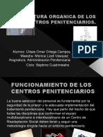 ESTRUCTURA ORGANICA DE LOS CENTROS PENITENCIARIOS.pptx