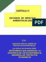 EIA Mineria y Medio Ambiente FIGMM