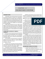 Biology Excretory System