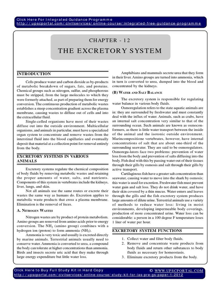 Freshwater fish excretory system - Freshwater Fish Excretory System