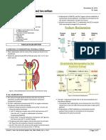 Physio 4.6 Renal Reabsorption and Secretion_Jerez