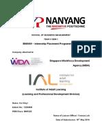 internship placement programme report pdf compressed