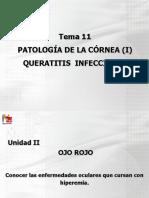 202034_PDF TEMA 11 PATOLOGIA DE LA CORNEA I 2012.pdf