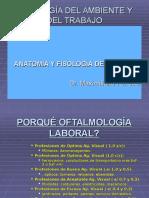 fisiologisdelavision.ppt