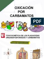 Intoxicacion Por Carbamatos