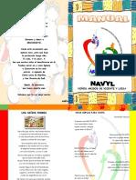 navyl MANUAL.pdf