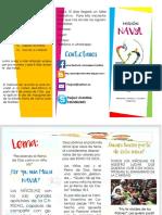 misión-navyl- Plegable.pdf