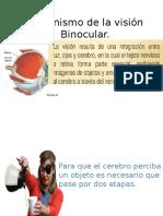 Mecanismo de La Visión Binocular