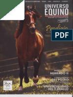 Revista Universo Equino nº 10 diciembre 2009- enero 2010