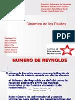 NUMERO DE REYNOLDS.ppt