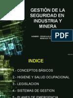 Gestion de La Segurdad en La Industria Minera