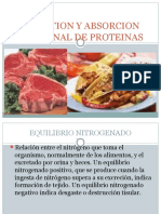 Digestion y Absorcion Intestinal de Proteinas