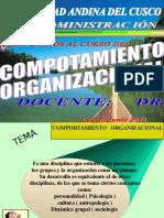 Comportamiento Crganizacional