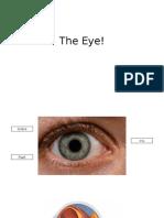 eye lesson