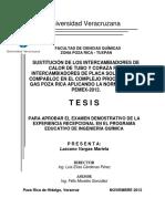 Tesis (CPG Poza Rica)