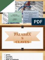 Exposición Grupo 6 Mutagenesis de ADN Clonado SEGUNDO PARCIAL