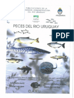 Peces Del Rio Uruguay