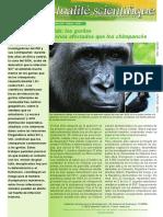 FAS341e Web