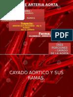 Sistema de la Aorta