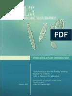DIATOMEAS-lowPANAMA.pdf