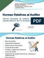 Normas Relativas Al Auditor