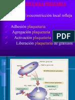 Fisiologia de La Coagulación