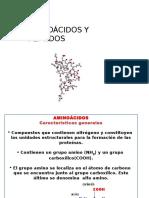 Clases de Aminoácidos