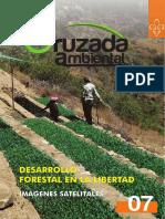 Desarrollo Forestal en La Libertad
