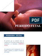 Periodo Fetal - Embriología I