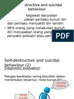 Self-Destructive and Suicidal Behaviour Diagnostic Evaluation